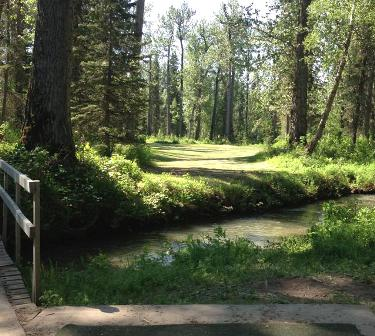 Sleepy Hollow Golf Course, Wasilla, Alaska, 99654 - Golf Course Photo