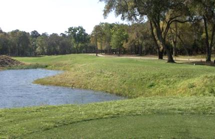 Sapelo Hammock Golf Club,Shellman Bluff, Georgia,  - Golf Course Photo