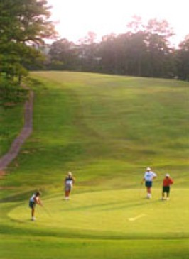 Pines Municipal Golf Course, The,Toccoa, Georgia,  - Golf Course Photo