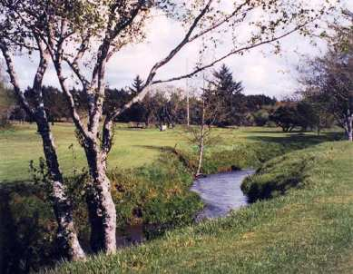 Bandon Face Rock Golf Course, Bandon, Oregon, 97411 - Golf Course Photo