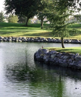 Diamond Oaks Municipal Golf Course,Roseville, California,  - Golf Course Photo