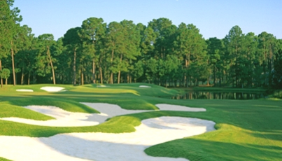 Golf Course Photo, Bear Creek Golf Club, Hilton Head Island, 13081