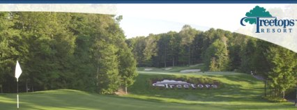 Golf Course Photo, Treetops Resort, Par 3 Course, Gaylord, 49735