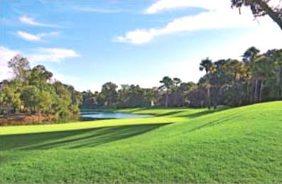 Palmetto Dunes Golf Course, Arthur Hills,Hilton Head Island, South Carolina,  - Golf Course Photo
