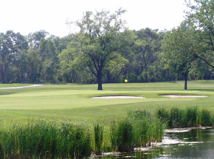 Golf Course Photo, Coyote Run Golf Course, Flossmoor, 60422