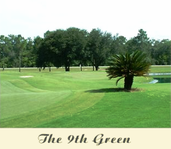 Wildwood Country Club, Crawfordville, Florida, 32327 - Golf Course Photo