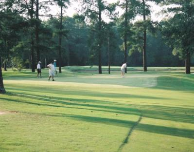 Green Acres Golf Course,Dexter, Georgia,  - Golf Course Photo