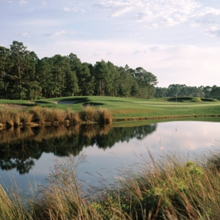 Sandestin Resort - Raven Golf Club Course, Sandestin, Florida, 32550 - Golf Course Photo