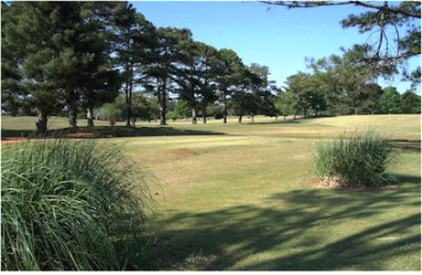 Raintree Golf Club,Thomaston, Georgia,  - Golf Course Photo