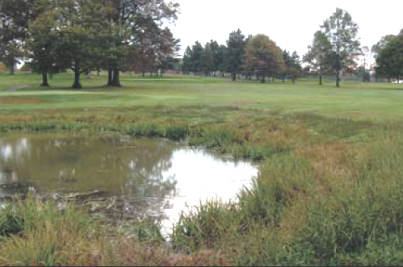 Saxon Golf Course -Saxon East,Sarver, Pennsylvania,  - Golf Course Photo