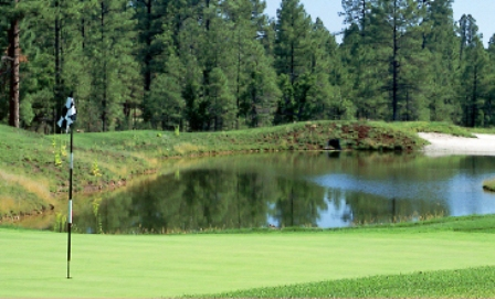 Torreon Golf Club, The Cabin Course,Show Low, Arizona,  - Golf Course Photo