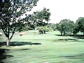 Pinecrest Golf Course, Largo, Florida, 33770 - Golf Course Photo