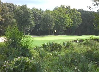 Golf Course Photo, Blackhorse Golf Club -North, Cypress, 77433