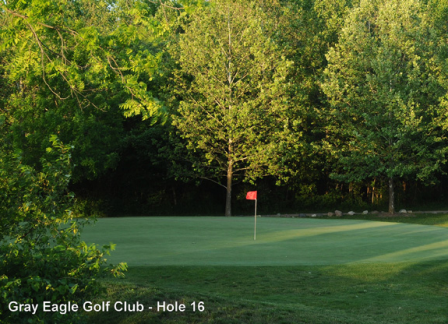 Gray Eagle Golf Club & Academy,Fishers, Indiana,  - Golf Course Photo