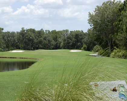 Golf Course Photo, Rosedale Golf & Country Club, Bradenton, 34202