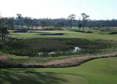TPC At Treviso Bay, Naples, Florida, 34113 - Golf Course Photo