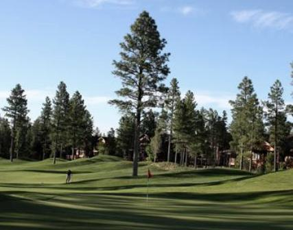 Torreon Golf Club, The Tower Course,Show Low, Arizona,  - Golf Course Photo