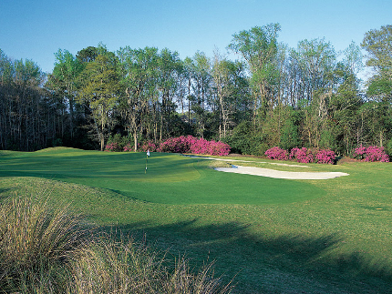 Brays Island Plantation Golf Club,Sheldon, South Carolina,  - Golf Course Photo