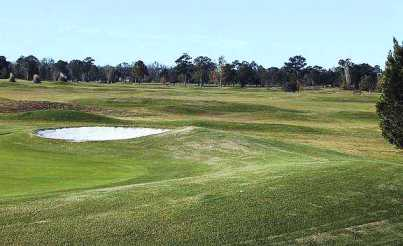Golf Course Photo, Brickyard Plantation Golf Club - Ditches-Waters-Mounds, Americus, 31709