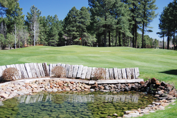 Pinetop Lakes Golf & Country Club,Pinetop, Arizona,  - Golf Course Photo