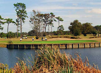 Rogers Park Golf Course, Tampa, Florida, 33610 - Golf Course Photo