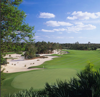 Calusa Pines Golf Club, Naples, Florida, 34120 - Golf Course Photo