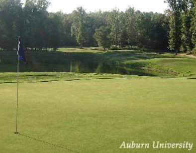 Auburn University Golf Course , Auburn, Alabama, 36830 - Golf Course Photo