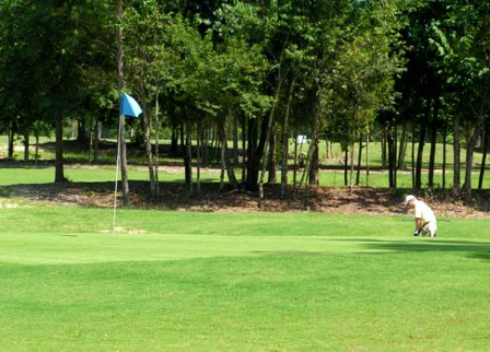 Caddy Shak Golf Course ,Lexington, South Carolina,  - Golf Course Photo