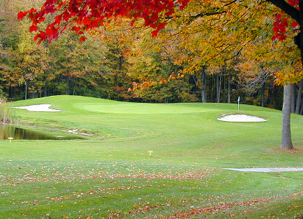 Golf Course Photo, Maple Leaf Golf Course, Linwood, 48634