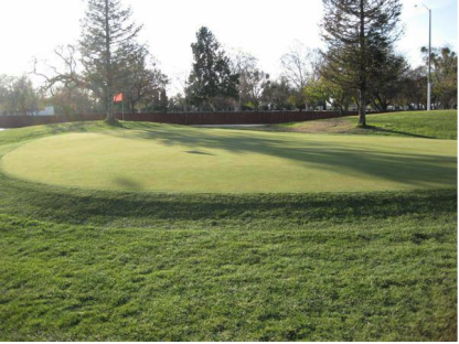 French Camp Golf Course, Manteca, California, 95336 - Golf Course Photo
