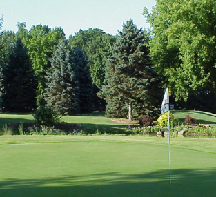 Deer Run Golf Course, Lowell, Michigan, 49331 - Golf Course Photo