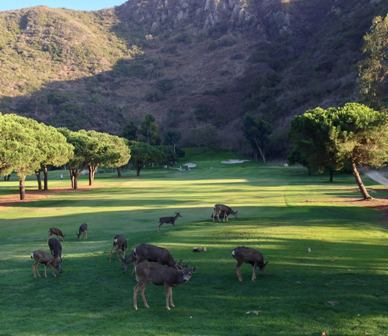 Ben Browns Golf Course,Laguna Beach, California,  - Golf Course Photo