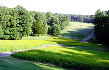 Golf Course Photo, Montgomery Bell State Park Golf Course, Burns, 37029