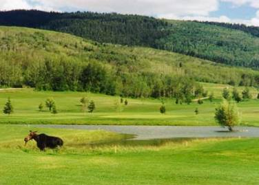 Golf Course Photo, Targhee Village Golf Course, Alta, 83422