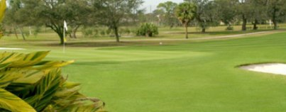 Golf Course Photo, Dunedin Country Club, The, Dunedin, 34698