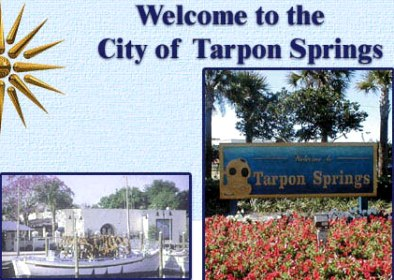 Tarpon Springs Golf Course, Tarpon Springs, Florida, 34689 - Golf Course Photo
