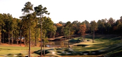 Golf Course Photo, Reynolds Plantation, The Creek Club, Greensboro, 30642