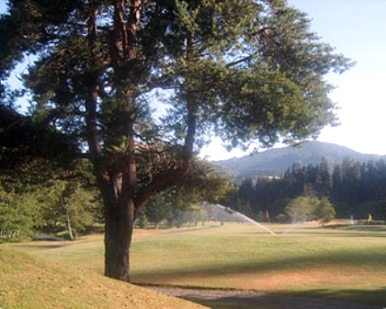Cedar Bend Golf Club, Gold Beach, Oregon, 97444 - Golf Course Photo