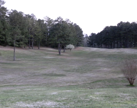 Cahawba Falls Country Club, Centreville, Alabama, 35042 - Golf Course Photo