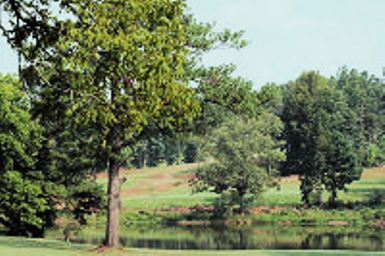 Lake Jonesco Golf Course,Gray, Georgia,  - Golf Course Photo