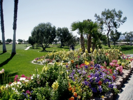 Palm Desert Greens Country Club,Palm Desert, California,  - Golf Course Photo