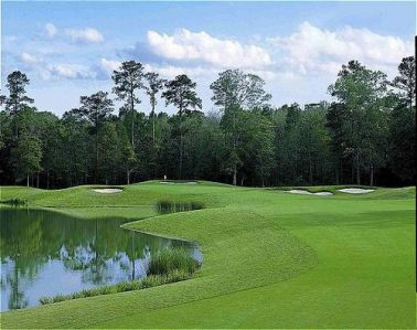 Carter Plantation,Springfield, Louisiana,  - Golf Course Photo