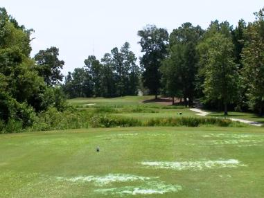 Golf Course Photo, Coosaw Creek Country Club, North Charleston, 29420