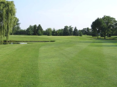 University Of Illinois Golf Course - Orange