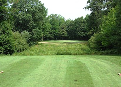 Twin Birch Golf Club,Kalkaska, Michigan,  - Golf Course Photo