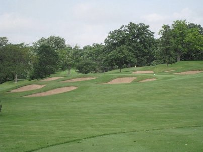 Golf Course Photo, Big Run Golf Club, Lockport, 60441