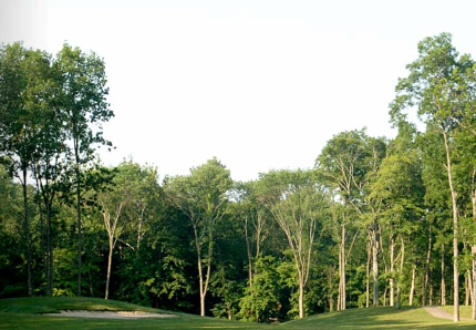 Safari Golf Club,Powell, Ohio,  - Golf Course Photo