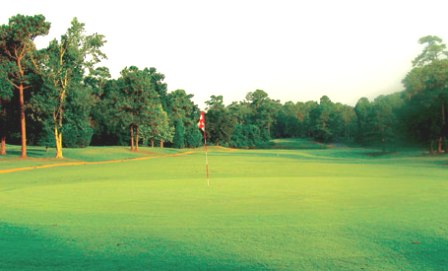 Golf Course Photo, Mississippi National Golf Club, Gautier, 39553