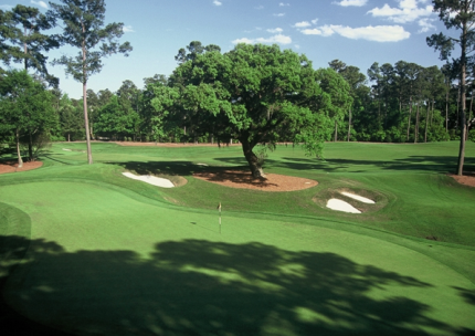 Caledonia Golf & Fish Club | Caledonia Golf Course, Pawleys Island, South Carolina, 29585 - Golf Course Photo