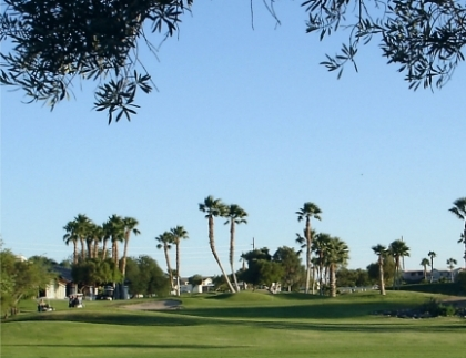 Riverview Rv Resort & Golf Club,Bullhead City, Arizona,  - Golf Course Photo